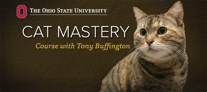 Cat Mastery iTunes U Course